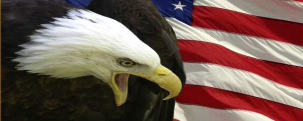 usa-flag-with-eagle american flag america american imperialism