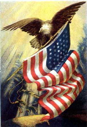 america flag american flag