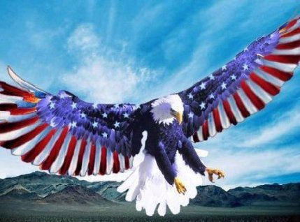 americanflageagle