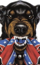 back_off_doberman_rebel_flag1